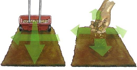 Insamantarea gazonului