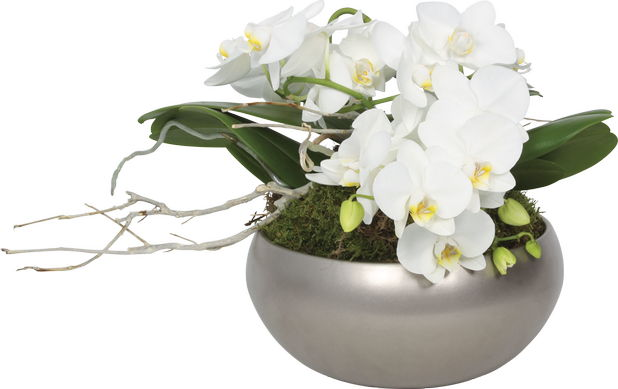 Cele mai frumoase aranjamente florale de sarbatori