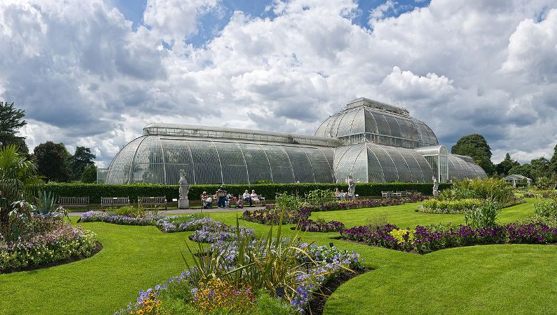 Kew_Palm_Gardens