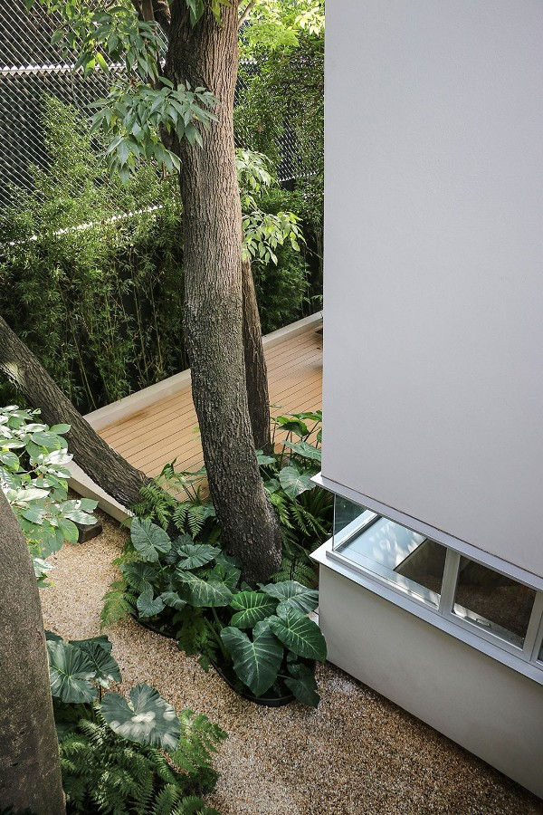 Casa_sustenabila_Mexico_city2