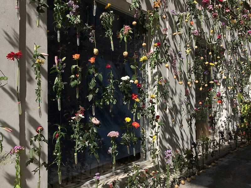 fatada-pastrarea-florilor-taiate-5