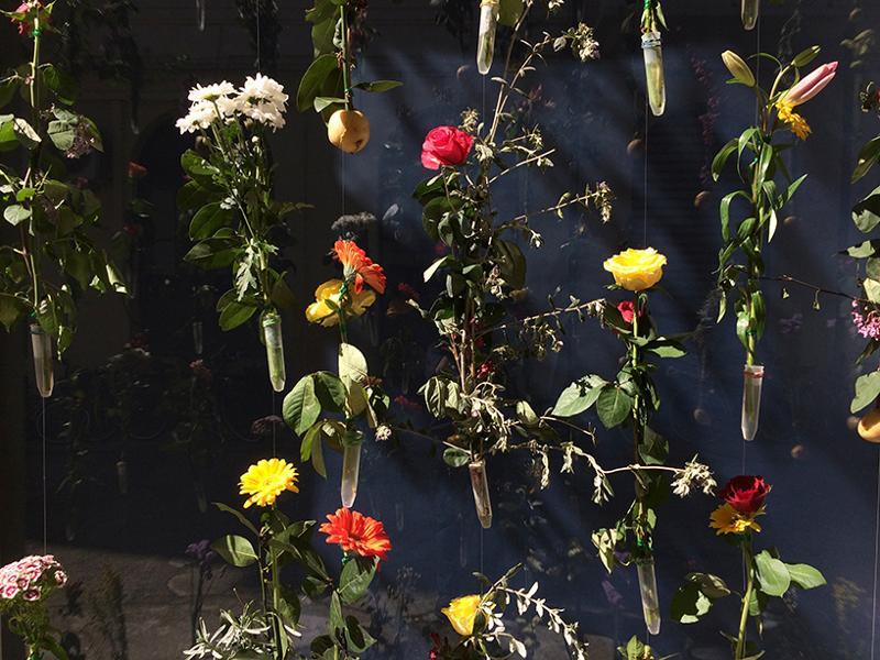 fatada-pastrarea-florilor-taiate-6