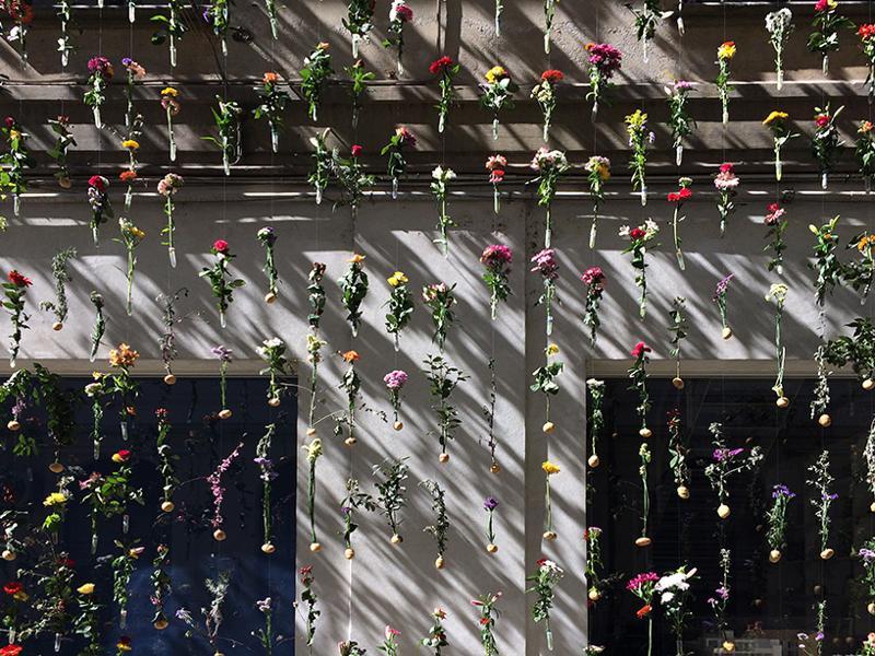 fatada-pastrarea-florilor-taiate-8