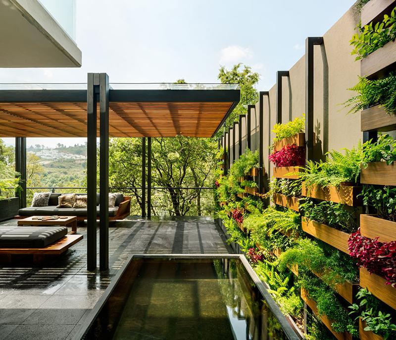 Includerea plantelor în spațiul de locuit – un apartament la parter