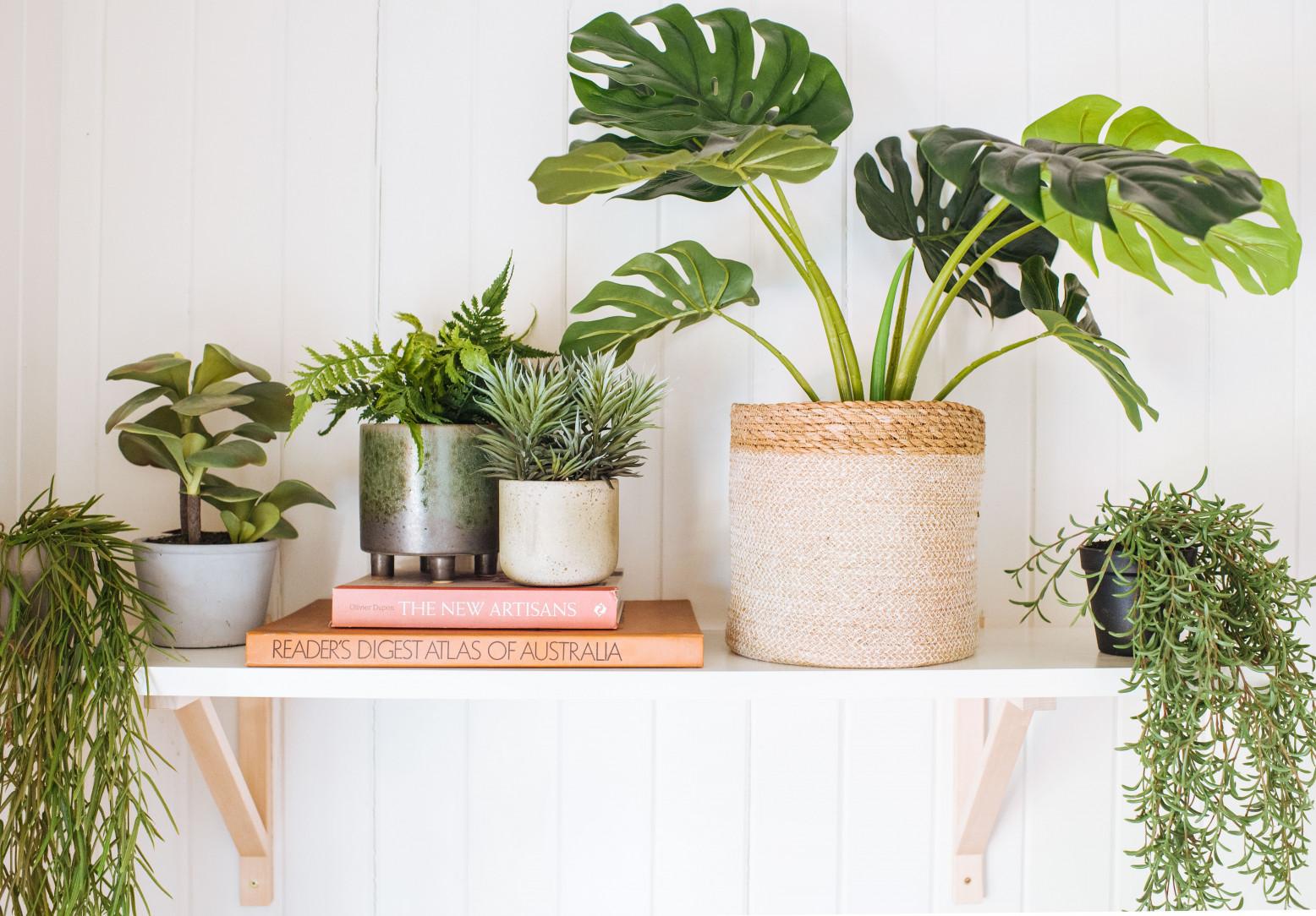 plante artificiale