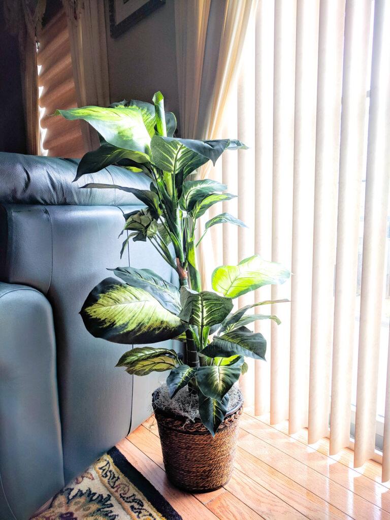 plantele artificiale, amplasamente