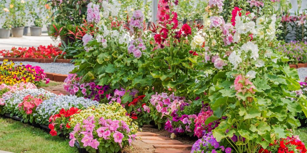 polenizatorii in gradina